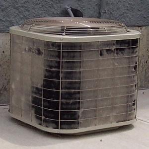 کولرگازی باد گرم می زند؟